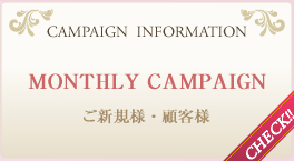 CAMPAIGN  INFORMATION